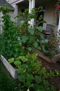Suburban Garden!